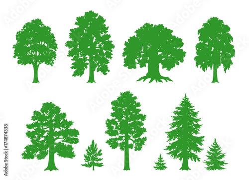 Silhouettes of trees - vector drawing - 174874338