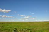 The African landscape. Kenya