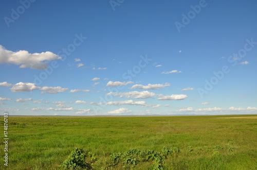 Papiers peints Herbe The African landscape. Kenya