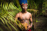 Indigenous man from Tupi Guarani tribe in the jungle, Brazil - 174877916