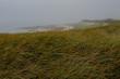 Cape Cod Fog