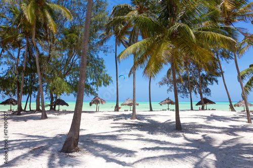 Poster Zanzibar Perfect white sandy beach with palm trees, Paje, Zanzibar, Tanzania