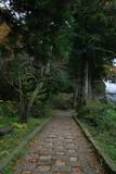 箱根湖岸遊歩道