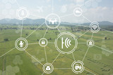 internet of things industrial agriculture,smart farming concepts,the various farm technology in the futuristic icon on the field background ict (information communication technology) - 174914587