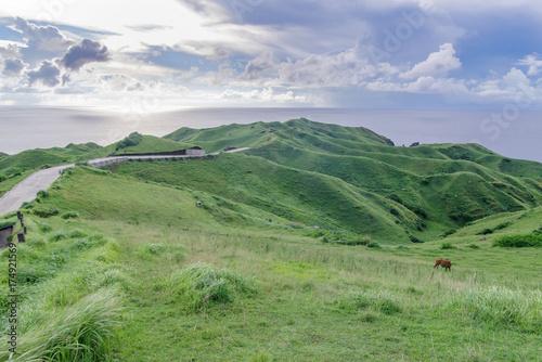 Spoed canvasdoek 2cm dik Olijf View from Vayang Rolling Hills, Ivatan Island, Batanes