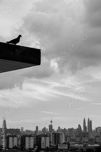 Silhouette of bird over downtown Kuala Lumpur, Malaysia Poster