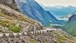 Дороги Норвегии - 174951915