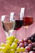 Quadro set di vini e uva
