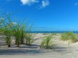 einsamer leerer strand mit Strandhafer und meer