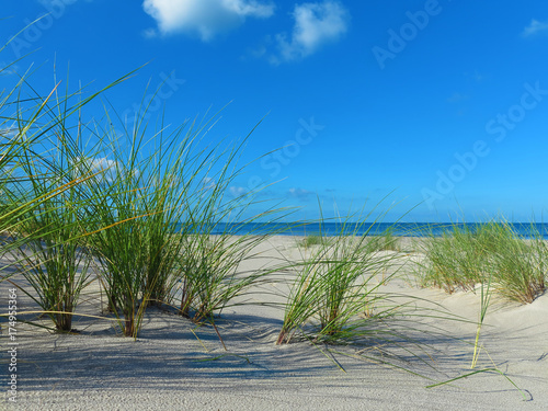 Poster Noordzee einsamer leerer strand mit Strandhafer und meer