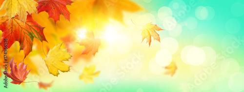 Fridge magnet Abstract autumn background