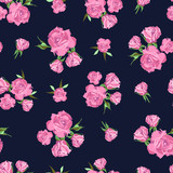 Seamless pattern on dark blue background. Rose flowers. - 174974742