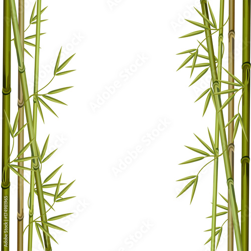 Frame made of bamboo branches. Vector illustration.