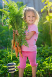 a girl  with a bunch of carrots - 174986307
