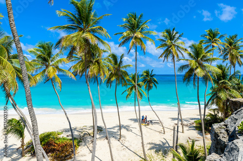 Fotobehang Caraïben Bottom Bay, Barbados - Paradise beach on the Caribbean island of Barbados. Tropical coast with palms hanging over turquoise sea. Panoramic photo of beautiful landscape.