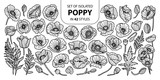 Set of isolated poppy in 42 styles. Cute hand drawn vector illustration in black outline and white plane.