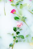 Roses in foam bath in a SPA center - 175016574