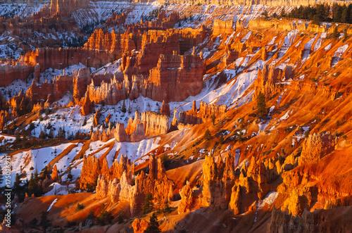 Foto op Plexiglas Bordeaux Bryce Canyon