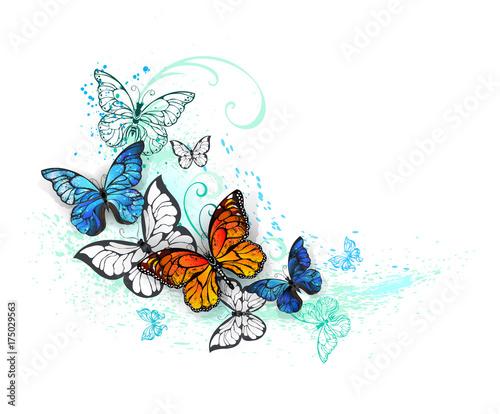 Keuken foto achterwand Vlinders in Grunge Artistic Morpho and monarchs