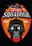pilot air force squadron - 175032754