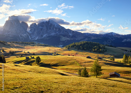 Poster Honing Alps sunrise green mountain panorama landscape, Alpe di Siusi