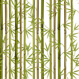 Bamboo with leaves seamless pattern. Fence, texture wallpaper, fabric .Vector illustration.