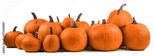 Foto op Canvas Verse groenten Many orange pumpkins