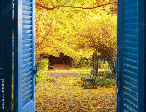 Fotobehang Meloen room with open blue window shutters to - fall garden with yellow tree leaves and bench