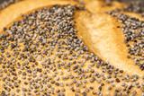 Mohnkörner auf einer Mohnsemmel als Makroaufnahme - 175049502