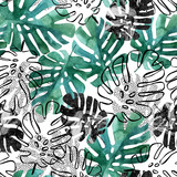 Monstera leaves seamless pattern. - 175064377