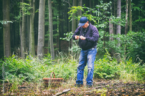 man gathering mushrooms in the woods Plakat