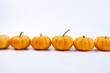 Quadro fresh pumpkins