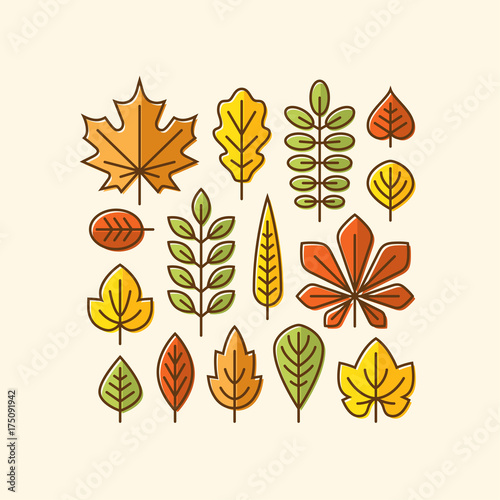 Colorful autumn leaves icons set.