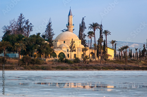 In de dag Cyprus View of the Mosque of Umm Haram or Hala Sultan Tekke on the west bank of Larnaca Salt Lake, near Larnaca, Cyprus