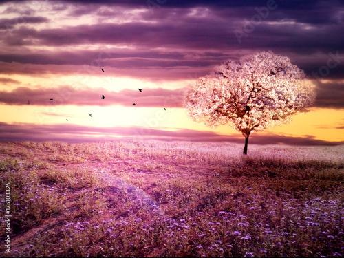Obraz Romantic purple landscape