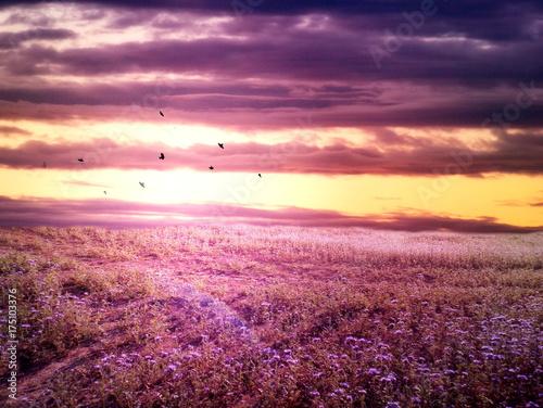 Fotobehang Natuur Romantic purple landscape