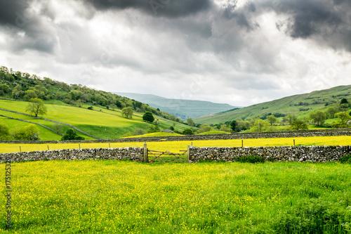 Fotobehang Lente Yorkshire Meadows