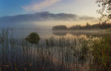 quiet misty morning on the lake - 175128151