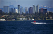 Bellevue Skyline from Lake Washington Speedboat Snow Capped Mountains