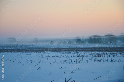 Foto op Plexiglas Blauwe jeans winter mist in the trees
