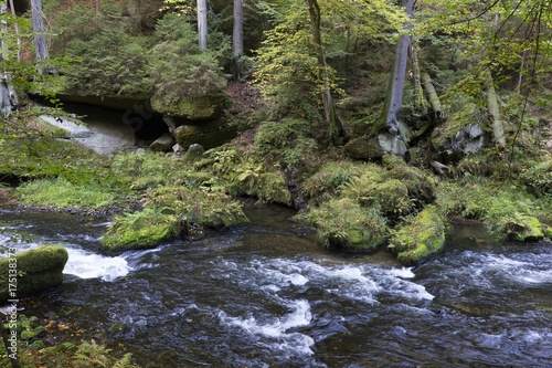 Staande foto Grijze traf. Wild autumn Landscape around the Creek Kamenice in the Czech Switzerland with Sandstone Boulders, Czech Republic