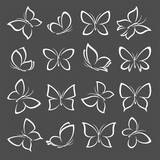 Butterflies set. Vector