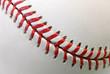 Professional Baseball Ball Raised-Seam