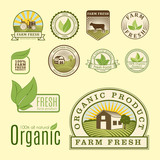Bio farm organic eco healthy food templates and vintage vegan green color for restaurant menu or package badge vector illustration. - 175149936