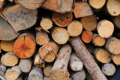 Tuinposter Brandhout textuur Close up Firewoods