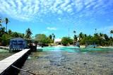 ponton sur le lagon eaux turquoise fakarava - 175159329