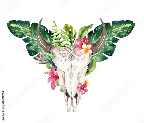 Watercolor bohemian cow skull and tropic palm leaves. Western deer mammals. Tropical deer boho decoration print antlers. flowers, leaves feathers. Isolated on white background. Aloha design. - 175178754