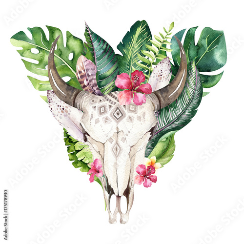 Watercolor bohemian cow skull and tropic palm leaves. Western deer mammals. Tropical deer boho decoration print antlers. flowers, leaves feathers. Isolated on white background. Aloha design. - 175178930
