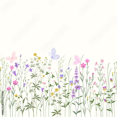 Fototapeta seamless floral border with meadow flowers and buttwerflies