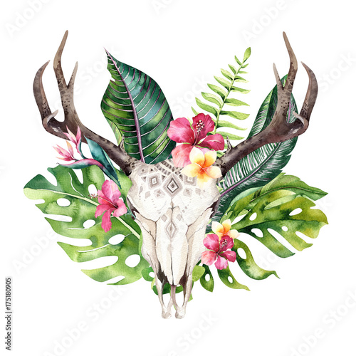 Watercolor bohemian cow skull and tropic palm leaves. Western deer mammals. Tropical deer boho decoration print antlers. flowers, leaves feathers. Isolated on white background. Aloha design. - 175180905